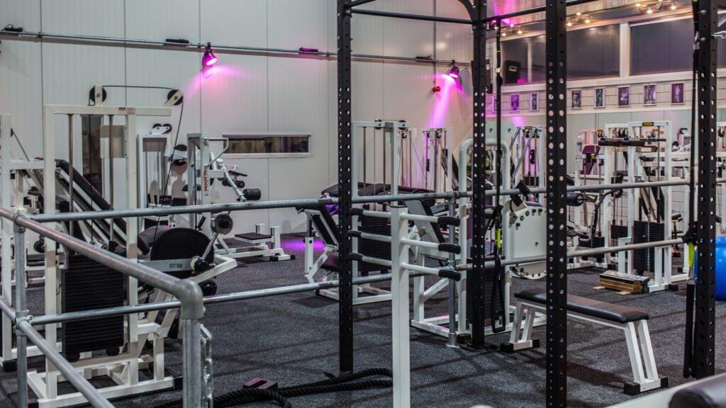 Angel's Gym